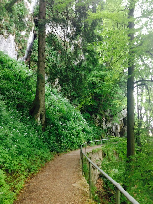 Nature trail at Honegg in Switzerland
