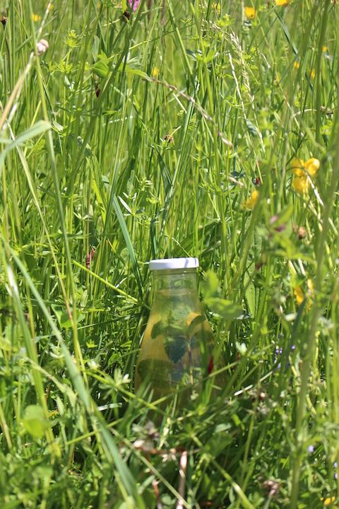 Natural bottle cooler ; )