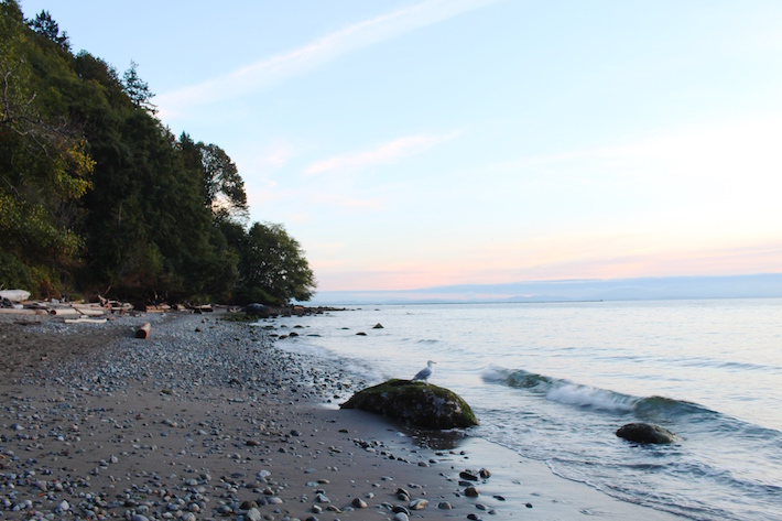 Beach at Pacific Spirit Regional Park